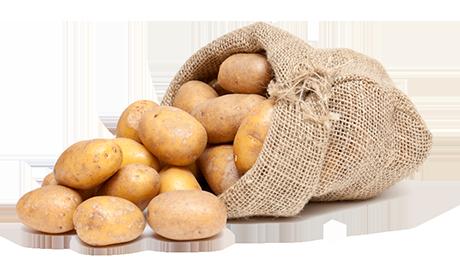 Frische Kartoffeln vom Bauernhof